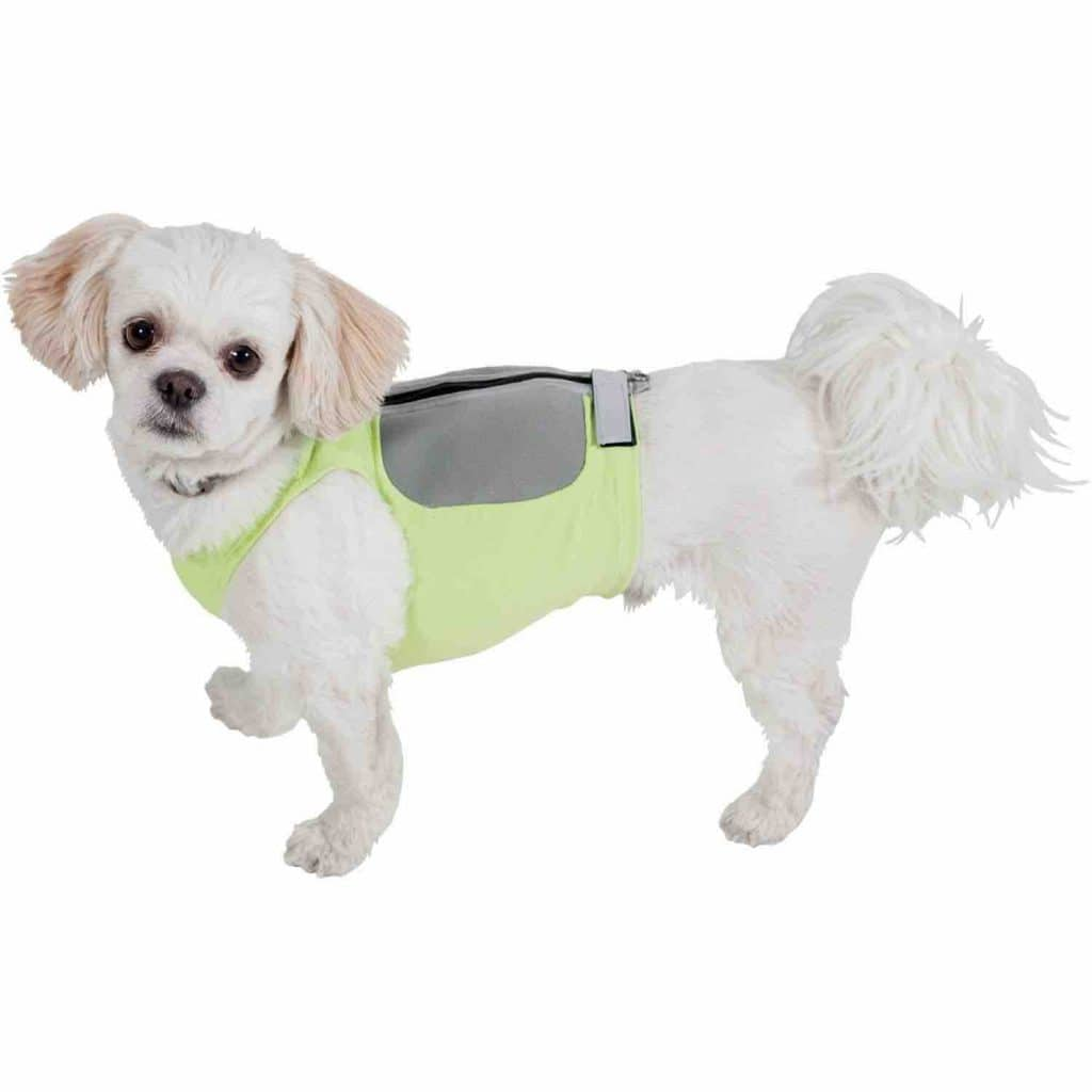 Picture of the K9 Fitvest Dog Weight Harness
