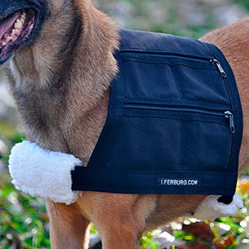 Picture of the Leerburg Dog Weight Harness