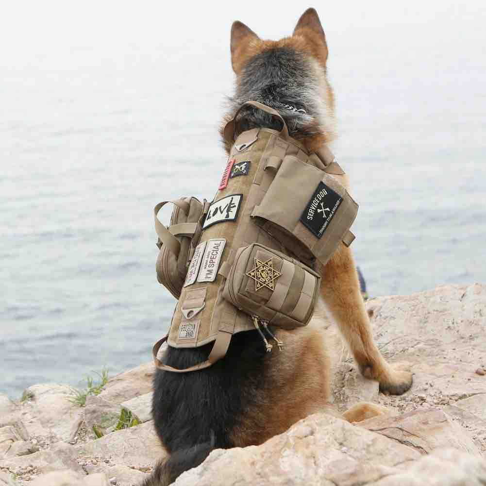 Picture of the OneTigris Molle Dog Weight Vest